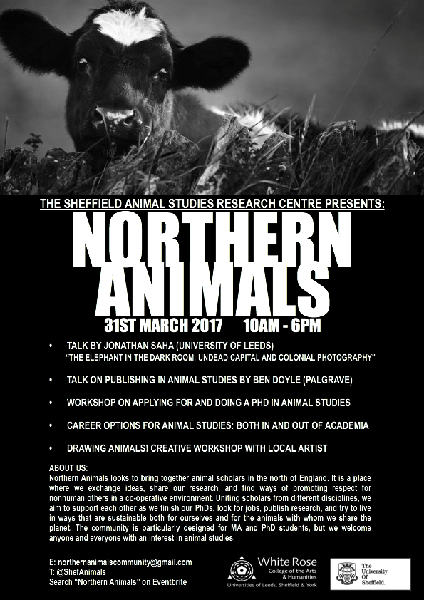 Northern Animals